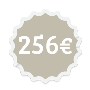 precio-256